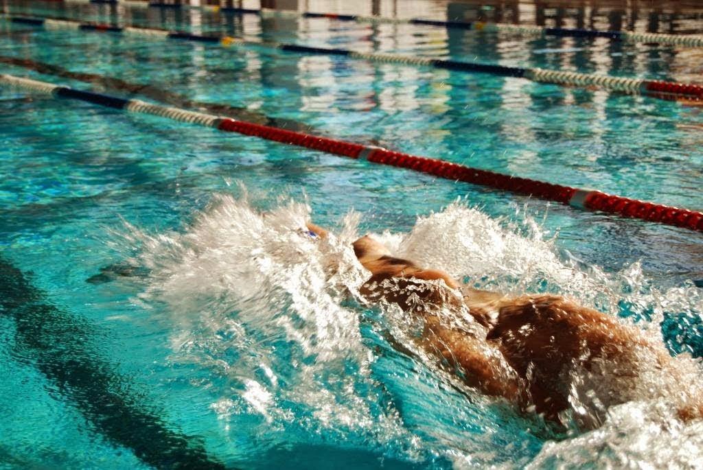49° Gala di nuoto naturista - Andalo  - Fenait